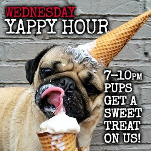 Wednesday Yappy Hour